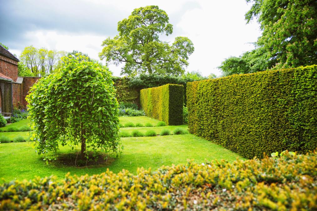 décoration arbre jardin